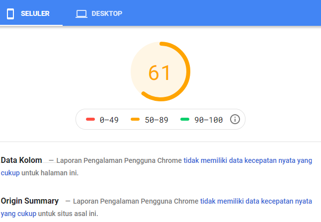 hasil pagespeed